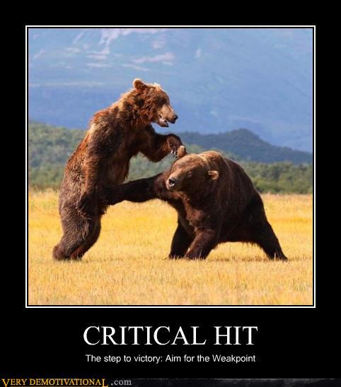 Critical Hit Bears
