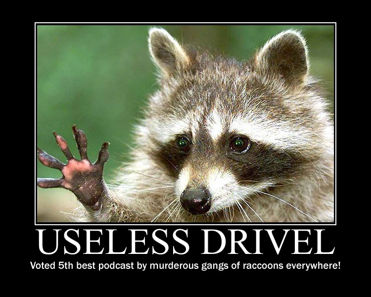 Useless Drivel Raccoon